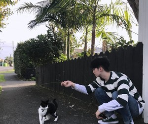 boy, cat, and asian image