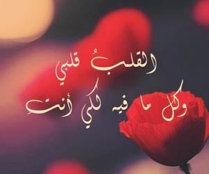 love, حُبْ, and غزل image