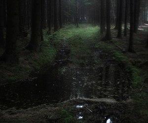 black, dark, and fog image