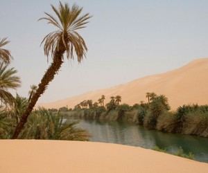desert, nature, and oasis image