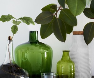 green, plants, and vase image