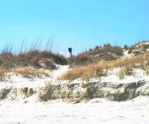 dunes, ocean, and vacation image