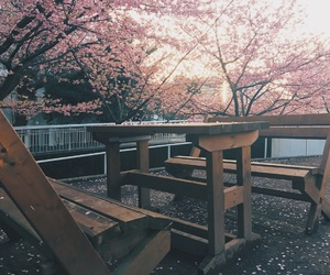 bench, goals, and photography image
