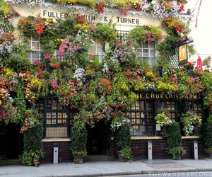 flowers, london, and traveling image