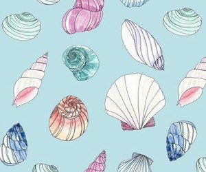 wallpaper, shell, and background image