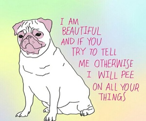 pug, dog, and quotes image
