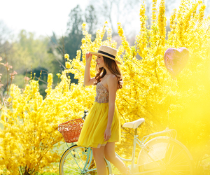 fashion blogger, yellow flowers, and blue bike image