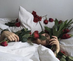rose, aesthetic, and bed image