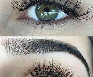 eyebrows, eyes, and eye image