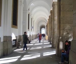 museo, sofia, and reina image