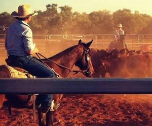 caballo, rancho, and fondo image