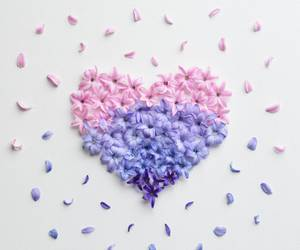 flowers, heart, and spring image