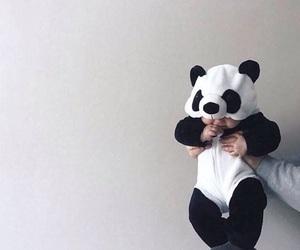babies, baby panda, and costume image
