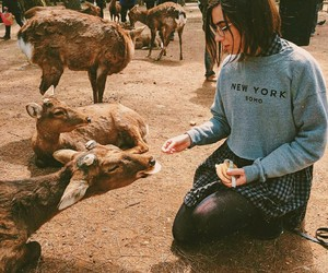 dodie, dodie clark, and japan image