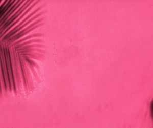 colorful, palm trees, and pink image