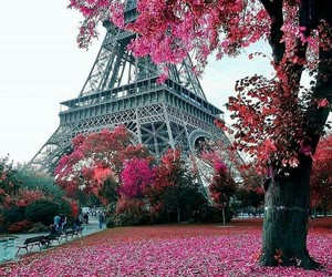 paris, autumn, and travel image