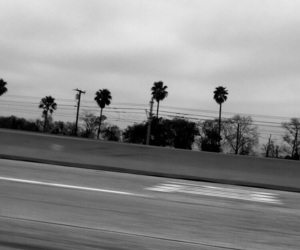 black, black and white, and cali image