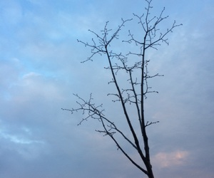 blue, sky, and spring image