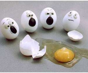 cool, egg, and funny image