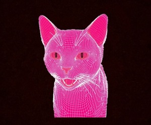 black, pink, and cat image