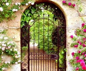 flowers, garden, and garden gates image