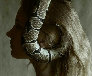 blond, blonde, and snake image