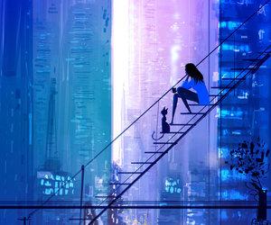 black cat, blue, and city image
