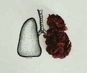tumblr vida amor locura image