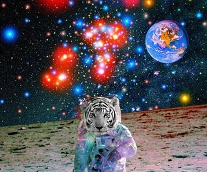 psychedelic, tiger, and psicodelia image