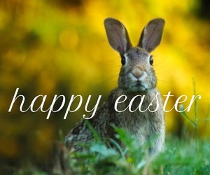easel, easter, and font image