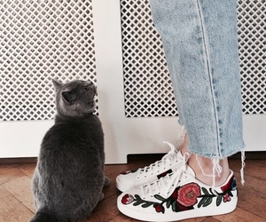 fashion, aesthetic, and cat image