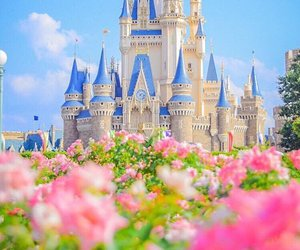 disney, flowers, and pink image