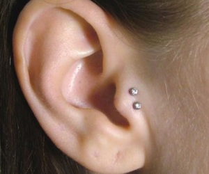 ear piercing, tragus, and tragud image