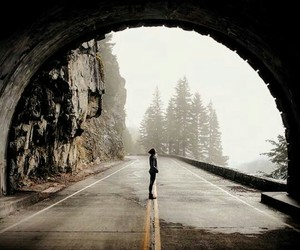 photography, nature, and road image