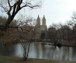 city, new york, and park image