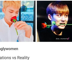 meme, expectations vs reality, and rose image