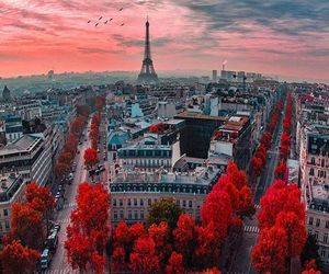 paris, red, and france image