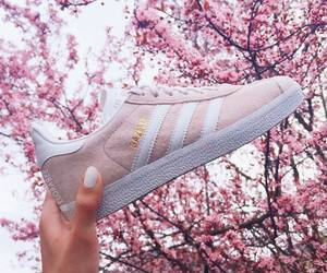 adidas, spring, and pink image