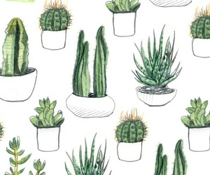cactus, patterns, and tumblr image