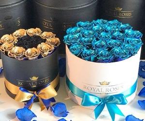 black, surprise, and blue image