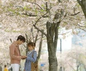 kdrama, park hyung sik, and love image
