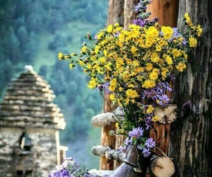 flowers, village, and spring image