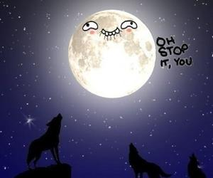 moon, wolf, and funny image