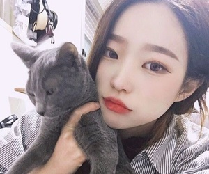 ulzzang, asian, and cat image