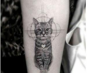 cat, tatuagem, and tattoo image