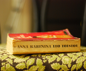 anna karenina and books image