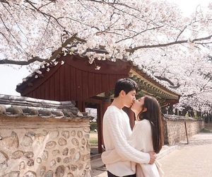 couple, korean, and spring image
