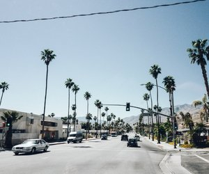 california, palm springs, and palm trees image