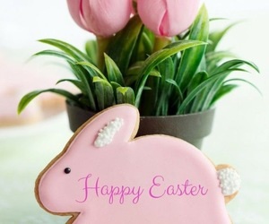 easter, bunny, and Cookies image