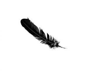 black and white, feather, and lock screen image